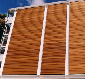 Cedar Non Retractable Blinds